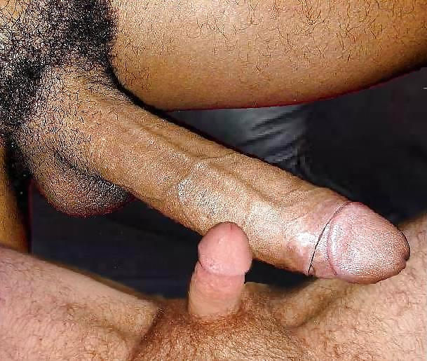 fellation gros penis gay poilu grosse bite